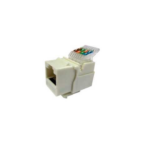 Conector CAT5 UTP hembra auto-crimpado, blanca
